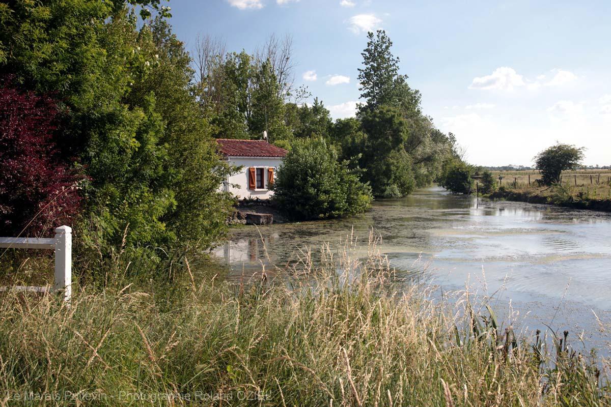 maison dans le marais poitevin